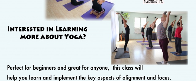 Weekly Beginners Yoga Class